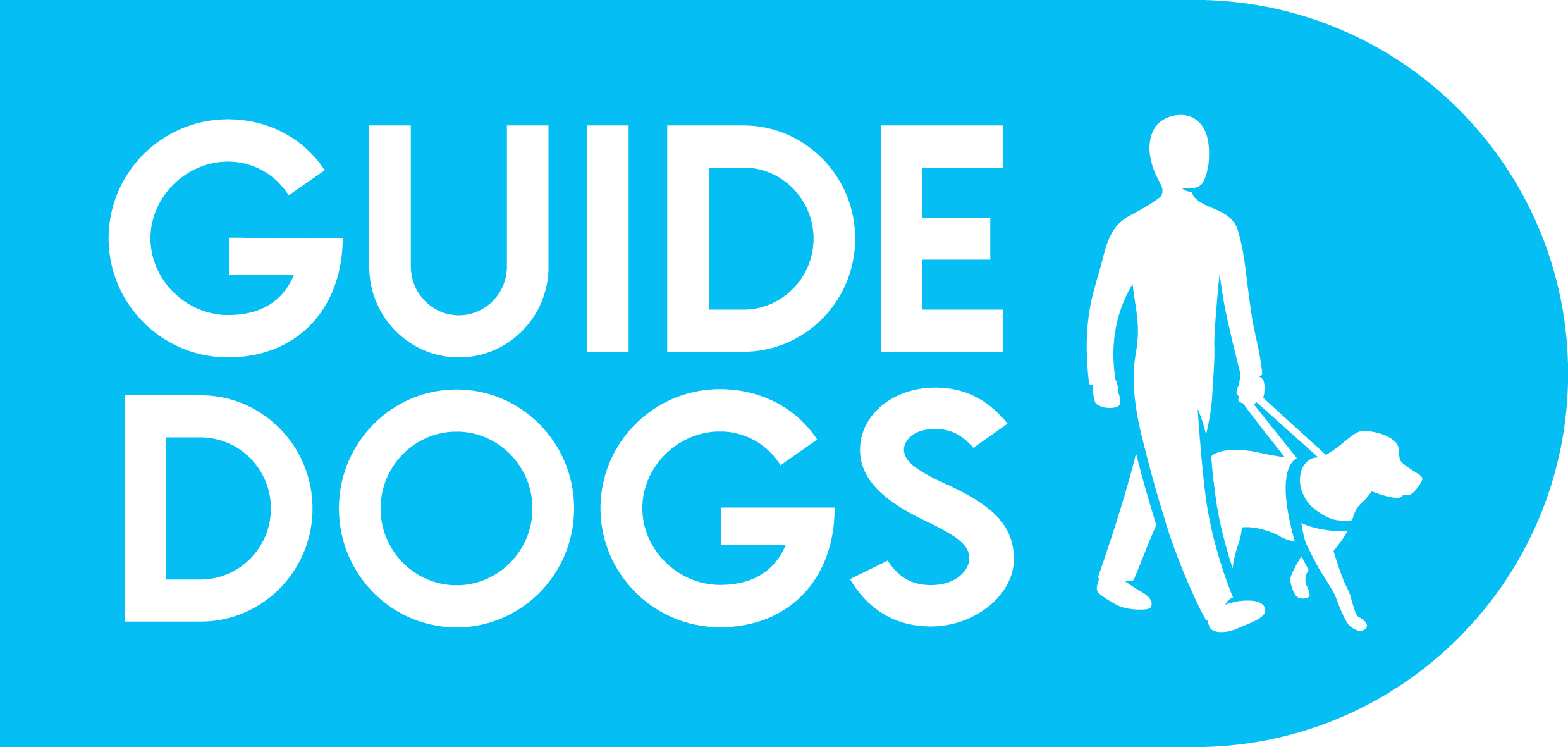 Guide dogs for the blind UK